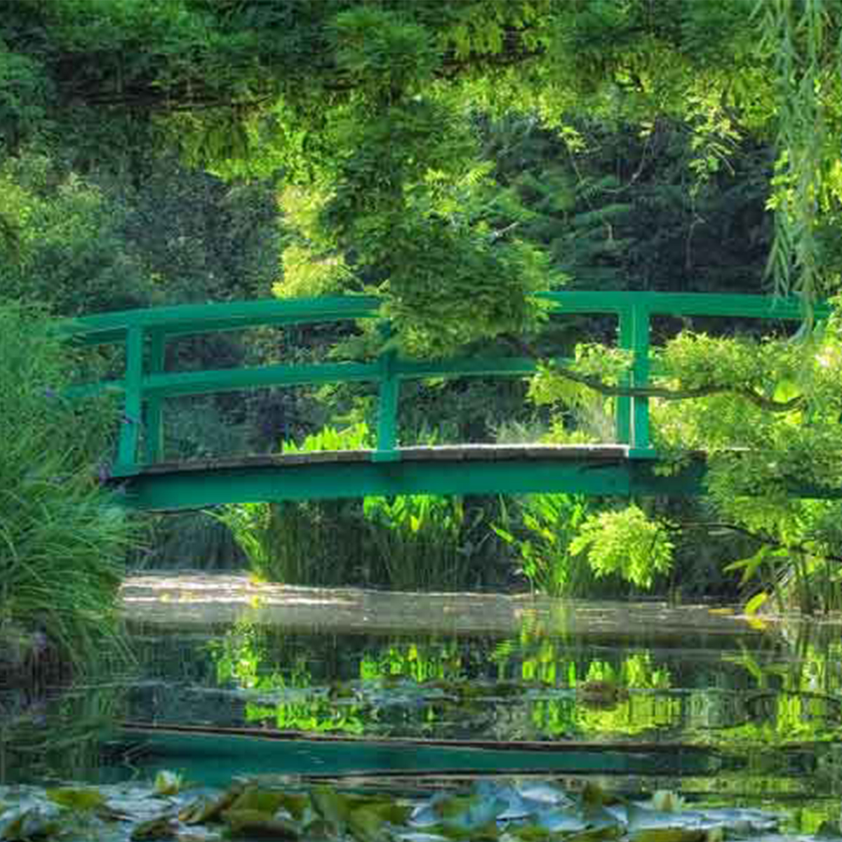 Jardins <br>de Monet